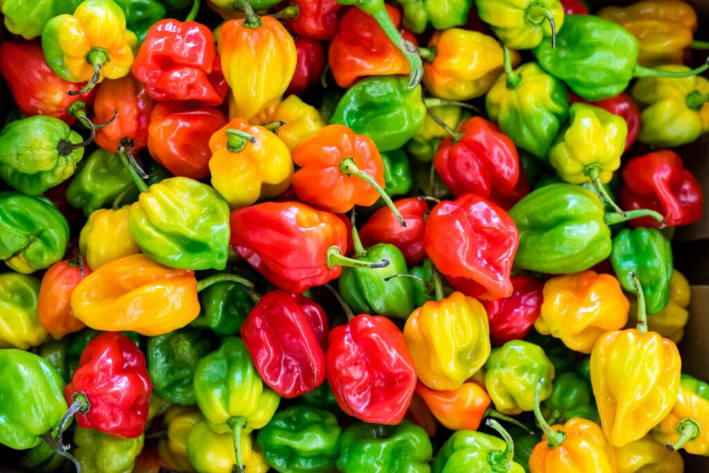 pile-of-chilies-1374651